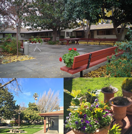 The Herman Health Care Center Is A Unique Family Owned Rehabilitation And Long Term Care Facility That Has Been Serving The San